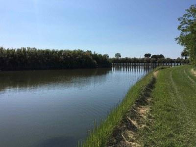 Canali nella Laguna Sud