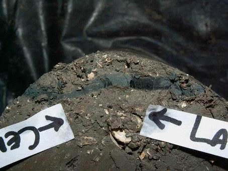 foto particolare stratigrafico